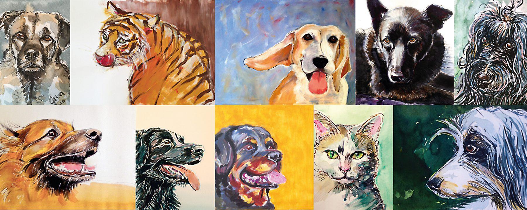 Zeichenzeugs_Tierportraits.jpg